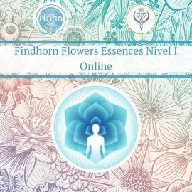 Formación acreditada de Esencias Florales Findhorn online