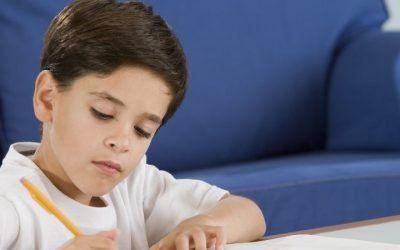 Concentración y estudios